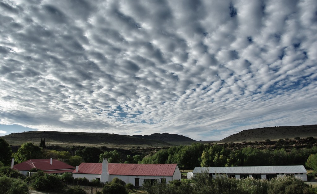 Ganora Farm, photograph by Roddy Fox